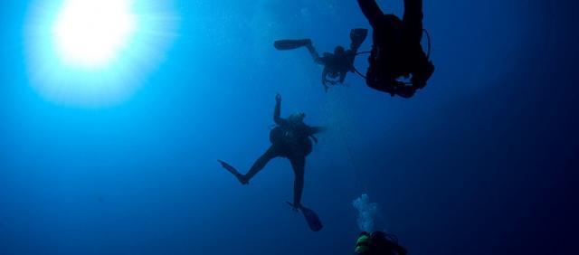 Tauchergruppe im Meer von Sardinien